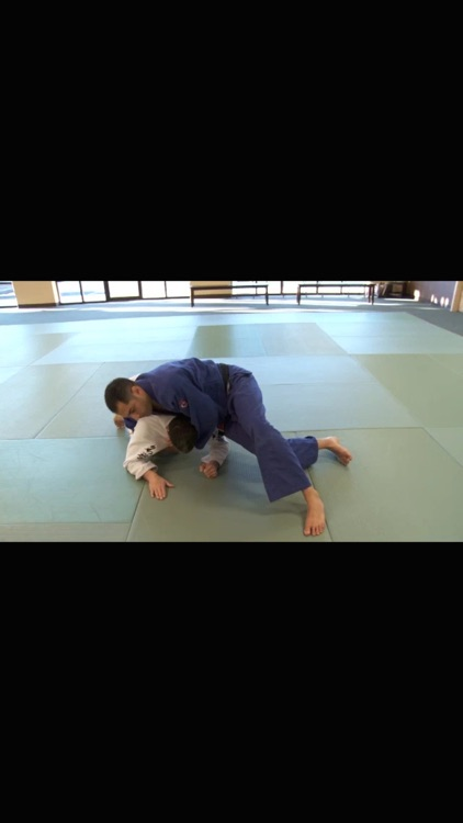 Brazilian Jiu Jitsu: Brown Belt Requirements screenshot-4