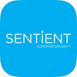 Sentient 960H