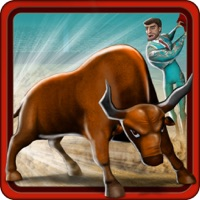 Codes for Bull Fighter Hack