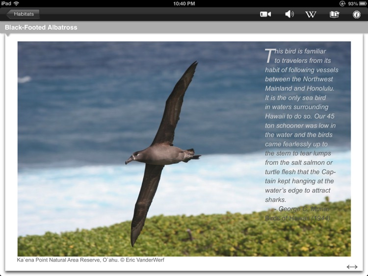 Bird ID Hawaii for iPad screenshot-4