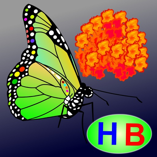 The story of Flower and Butterfly (Untold toddler story from Hien Bui)