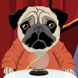 Peg The Mystic Pug