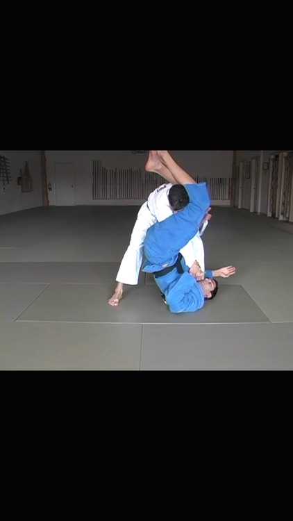 Brazilian Jiu Jitsu: Blue Belt Requirements screenshot-3