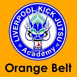 Orange Belt Kick Jutsu