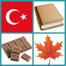 Activities of Learn Turkish: Word Quiz
