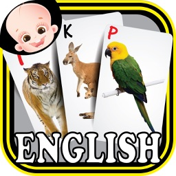 Baby Animals & Birds English ABC Alphabets Flash Cards for preschool kindergarten boys & girls apps