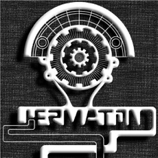 Activities of Hermaton