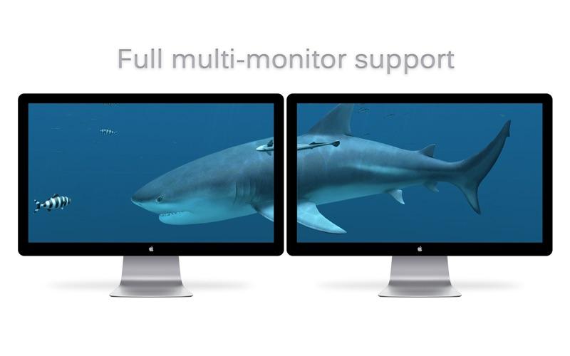 Screenshot #5 for Sharks 3D