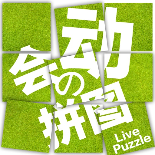 The dynamic of the puzzle——fun,free
