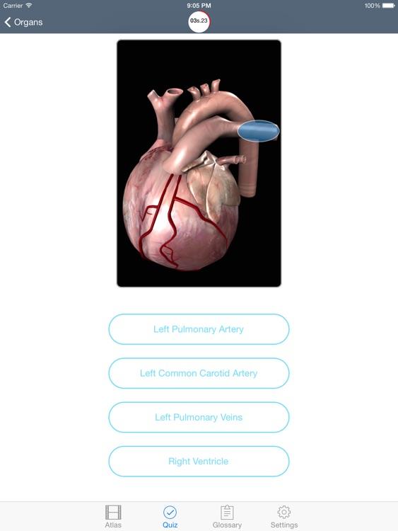 Physiology Human Atlas screenshot-4