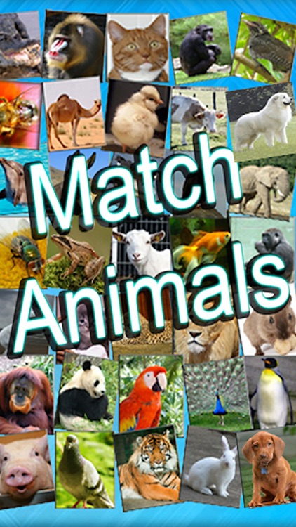Kids Can Match - Animals , vocal memory game for children HD screenshot-0