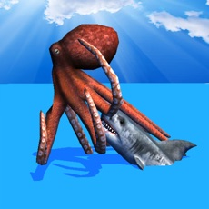 Activities of Octopus Survival Simulator