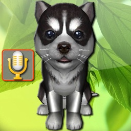 Talking Puppies, virtual pets to care, your virtual pet doggie to take care and play