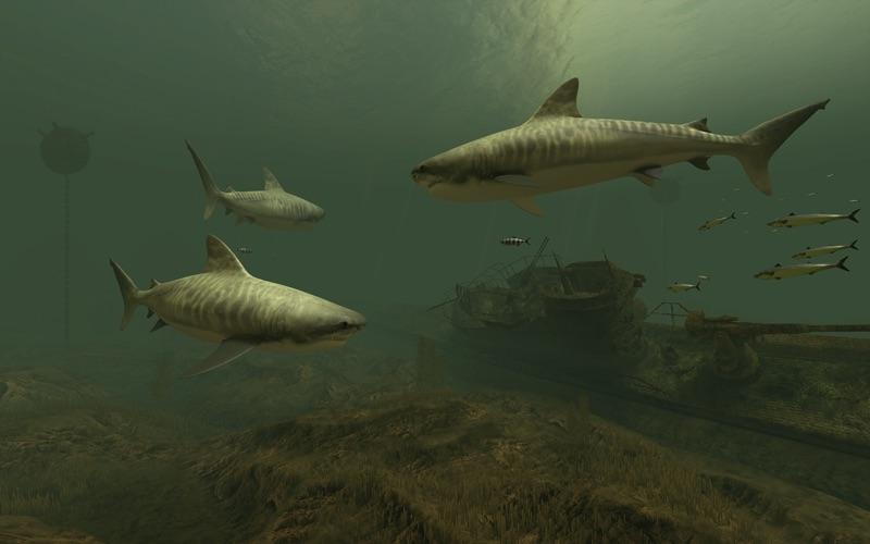 Screenshot #4 for Sharks 3D