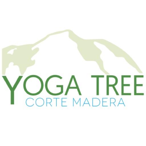 Yoga Tree Corte Madera