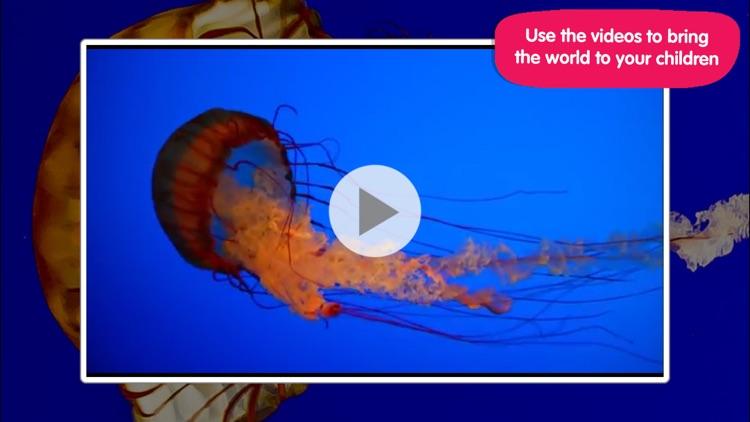 ABC Aquarium screenshot-4