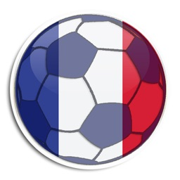 Ligue 1 - French Football League