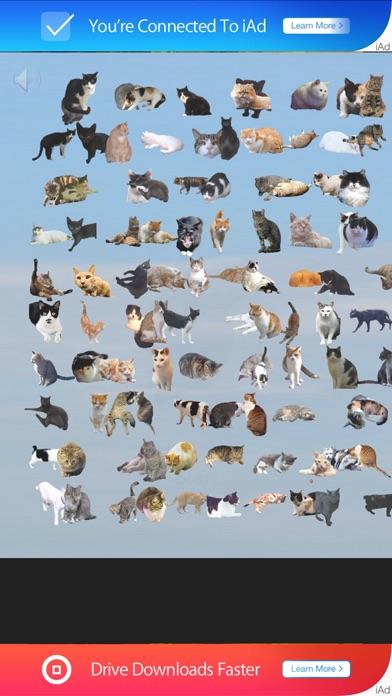 101匹の猫を探せ!!紹介画像3
