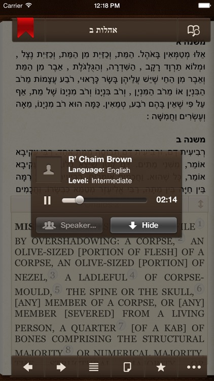 iMishna with English and Audio screenshot-4