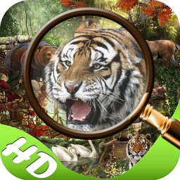 Mystery in Jungle Hidden Objects edition