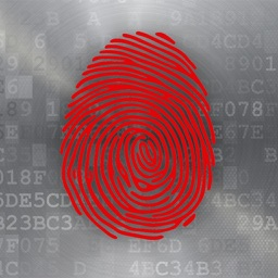 Data Breach 411