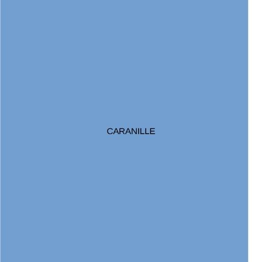 Caranille