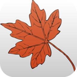 Maple Tap Tool