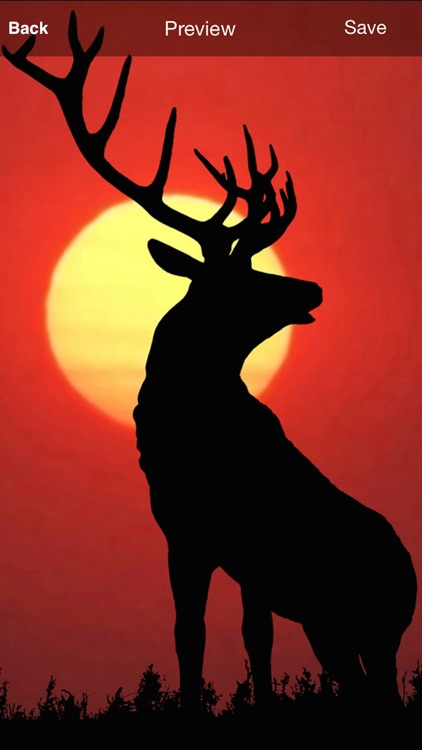 Deer Hunting Wallpaper and Background screenshot-3
