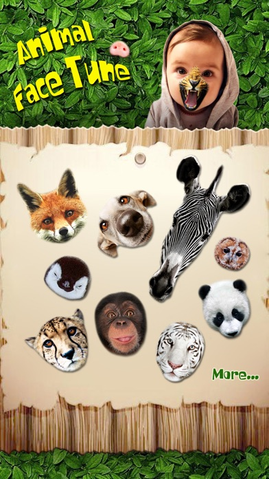 Animal Face Tune - Sticker Photo Editor to Blend, Morph and