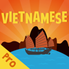 Overpass Limited - Vietnamese Flash Quiz Pro artwork