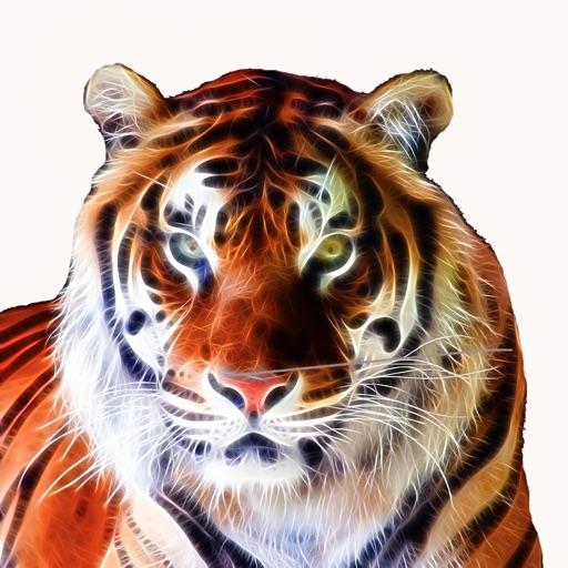 Animals Encyclopedia HD
