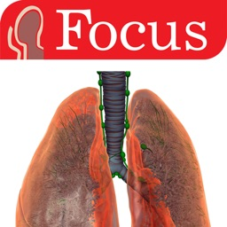 LUNGS - The Focus Digital Anatomy Atlas