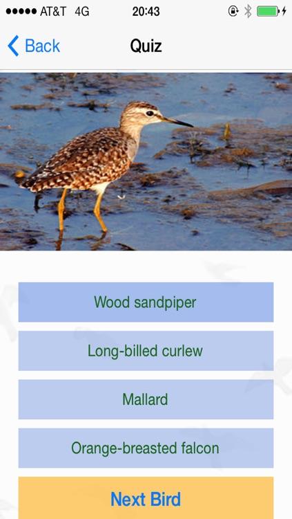 Bird Watching Guide & Identification screenshot-4
