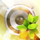 Voice Of Nature – background music for relaxation and meditation icon