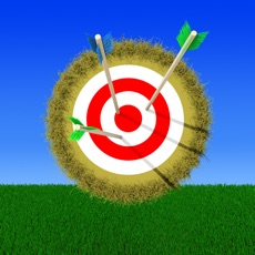Activities of Archery Pro