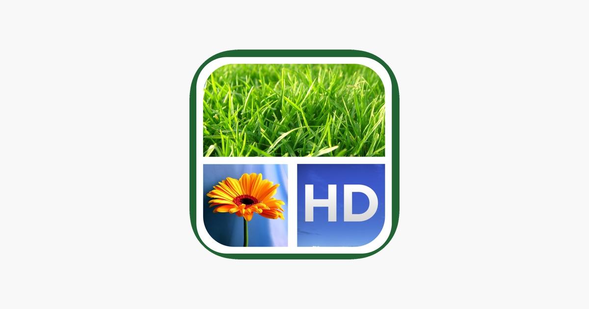 Dyptic Marcos FREE en App Store