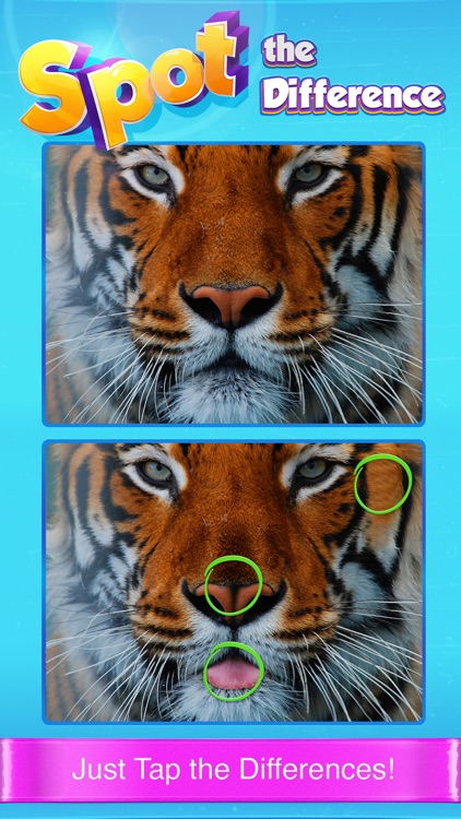 Spot The Difference! - What's the difference? A fun puzzle game for all the family