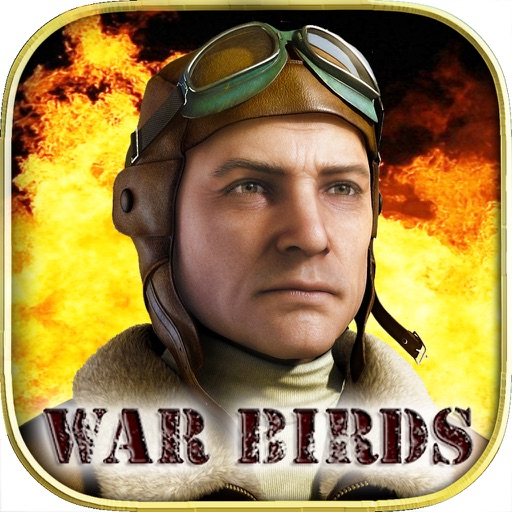 War Birds: WW2 Aircraft 1942