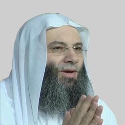 دروس ومحاضرات الشيخ محمد حسان