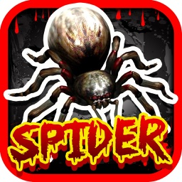 Spider of an Angry Killer in the Wildlife Casino Slots