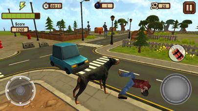 Doggy Dog World Pro screenshot three