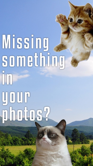 Sticky Cat - Free: Fun Stickers for pics screenshot one