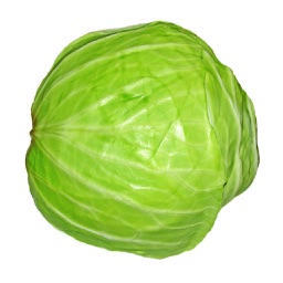 Cabbage Soup Diet For Weight Loss