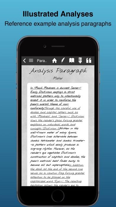 Literary Analysis Guide screenshot four