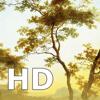 西洋絵画 HD