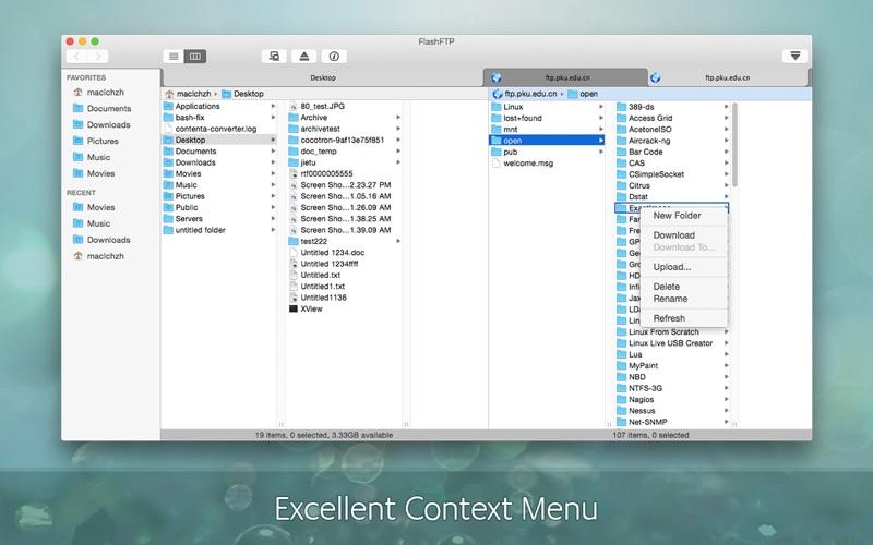FlashFTP Screenshot