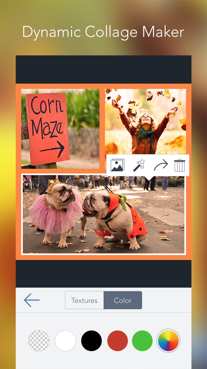 BeFunky - Photo Editor & Collage Maker Screenshot
