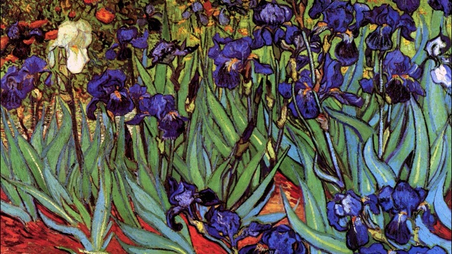 Art Wallpaper Van Gogh HD On The App Store