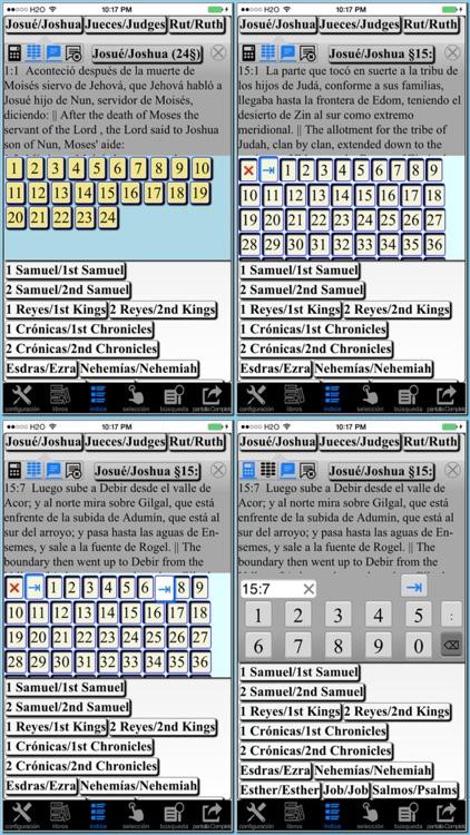 Spanish(Reina Valera)/English reference Bible screenshot-4