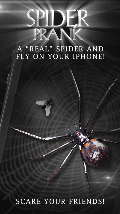 Spider Prank Lite screenshot-0